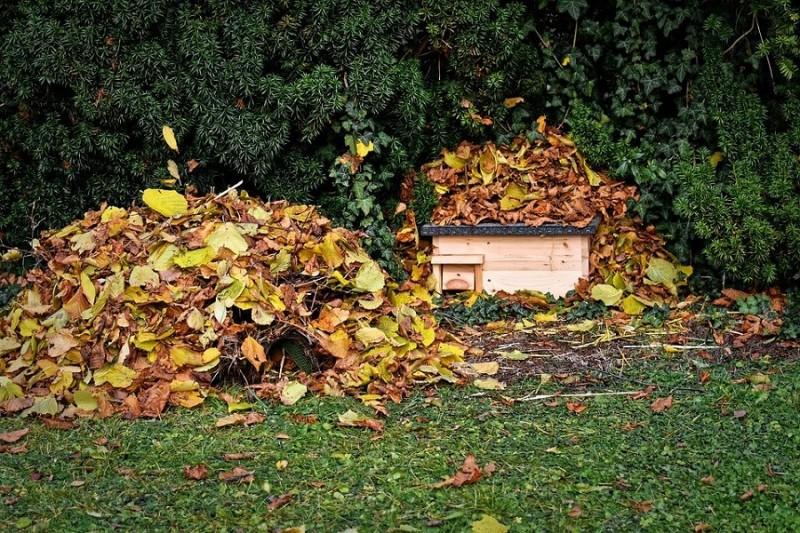 hedgehog-houses-4638624-960-720-13513