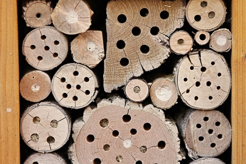 insect-hotel-2643713-960-720-13508