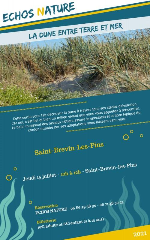 la-dune-entre-terre-et-mer-15juillet2021-12377