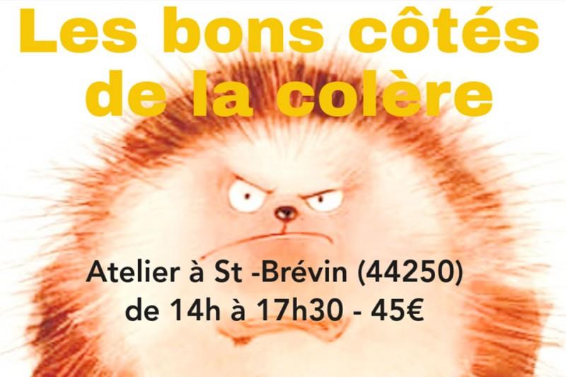 les-bons-cotes-de-la-colere-saint-brevin-12724