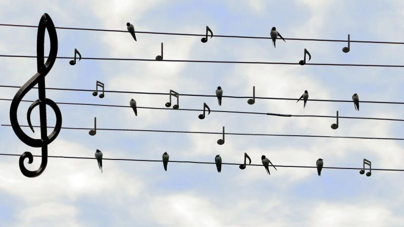 note-de-musique-6325