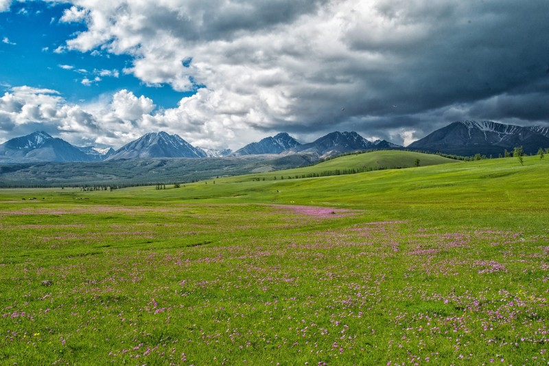 paysage-mongolie-11725