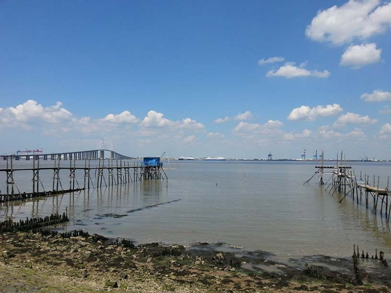randonnees-st-brevin-sud-estuaire-ccse-loire-atlantique-estuaire-loire-9794