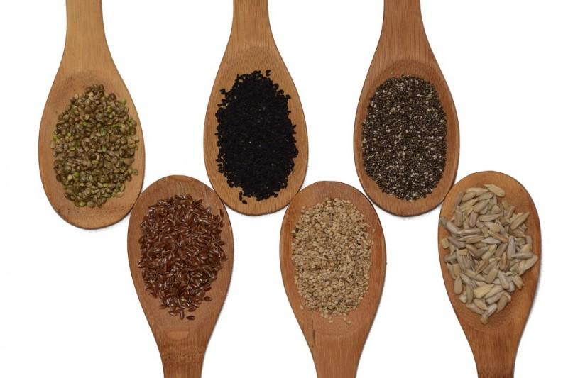semences-epi-erie-retzaunee-st-brevin-10590