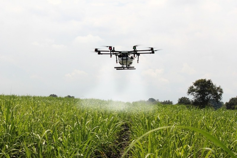spraying-sugar-cane-up-st-brevin-8346