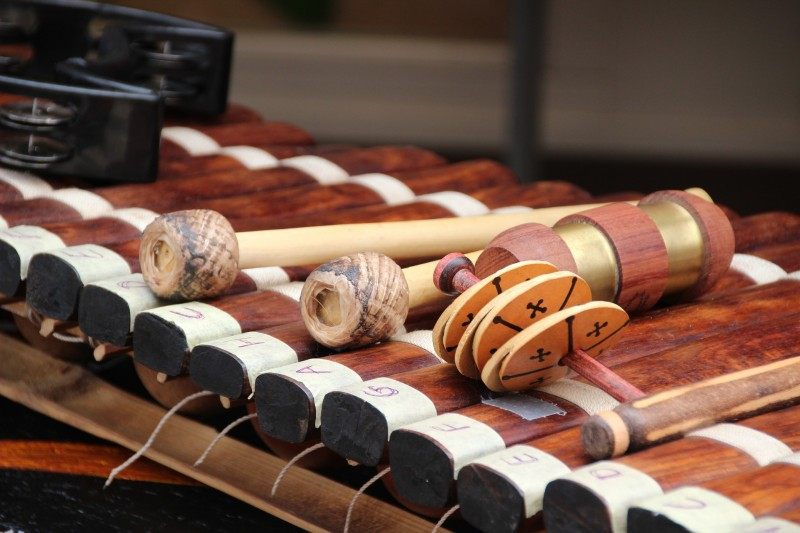 xylophone-percussions-5899